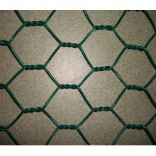 Malla de alambre de pollo / malla de alambre hexagonal (XMGB06)