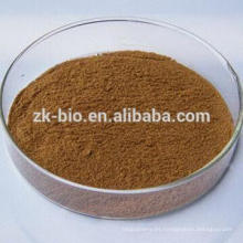 Extracto de hongo de Shiitake orgánico de alta calidad / extracto de edodes de Lentinula