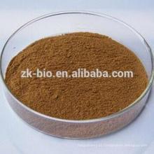 Extrato de cogumelo Shiitake orgânico de alta qualidade / extrato de edents de Lentinula
