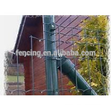 euro fence coatings for protecting use for sales/ PVC coated euro fence