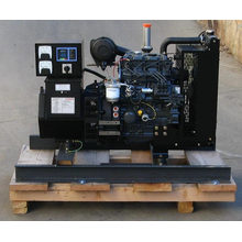 15kVA with Perkins Diesel Generator Set (HF12P1)