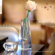 Hermosa vasija de vidrio de cristal para la decoración
