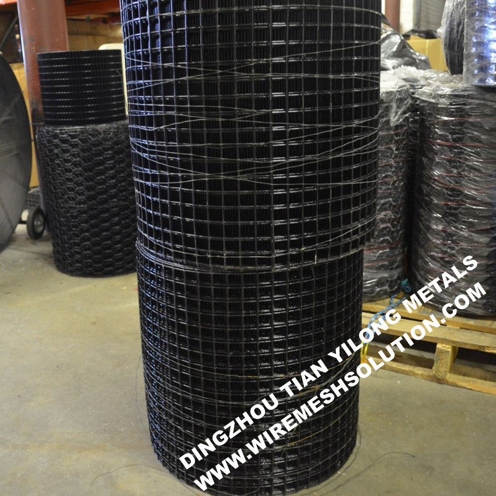 Black PVC Coated Welded Wire Mesh for Lobster