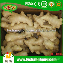 2014 Price of Fresh Ginger