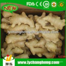 2014 Price of Fresh Ginger