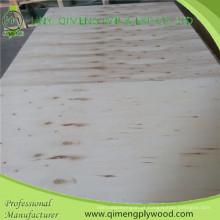 Forneça profissionalmente a madeira compensada do álamo de 15mm para a placa básica