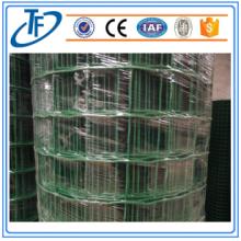 용접 철망 패널 / 플라스틱 코팅 네덜란드 와이어
