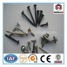 Fabrik- Speziell Herstellung -Drywall Schraube (Fabrik)