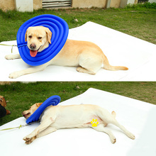 Collar vendedor caliente de la recuperación protectora del gato del perro casero