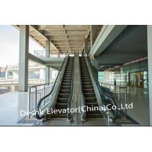 Transports publics Escaliers lourds à prix compétitif