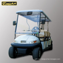 electric golf cart transmission/4 wheel electric car/buggy from China