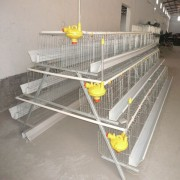 Hot sale 3 tiers chicken cage 3 layers chicken cage poultry farm