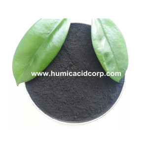 Nitro humic acid powder/Granule