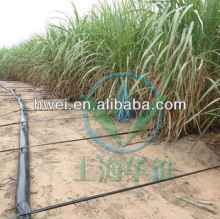 Drip Tape for Sugar Cane in Africa