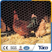 """Hengshui 0.9mm Draht 1/2 """"Loch galvanisierte sechseckigen Maschendraht des Hühnerstalls für Zoomasche"""