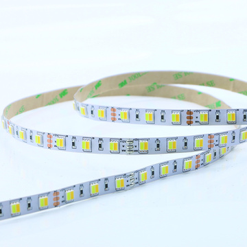 Flessibile Warm White SMD5050 60Led 12V