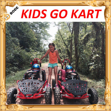 1000 W Electric Go Kart, mini go kart for kids