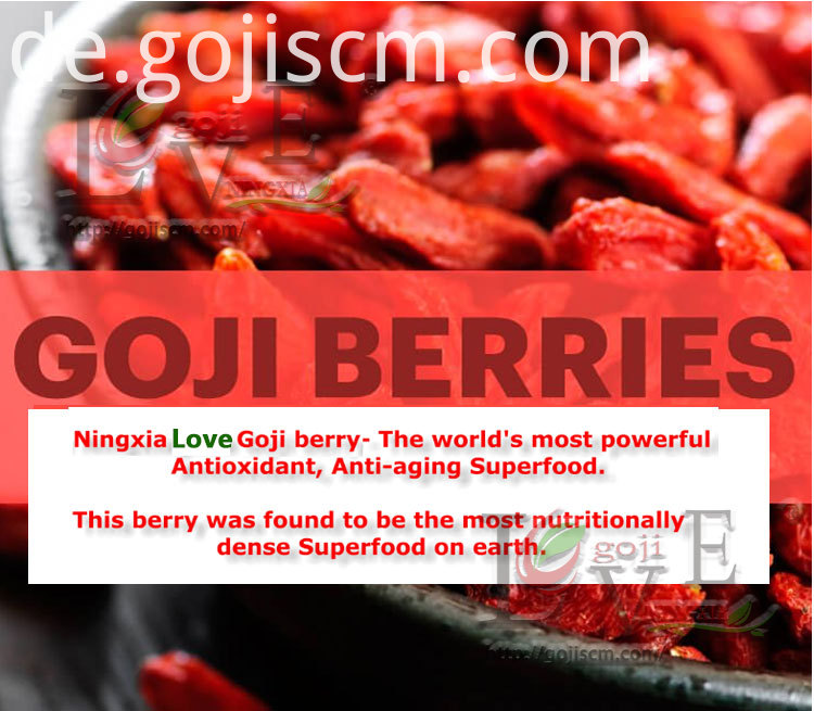 Healthy Goji Food benifits