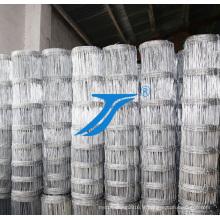 Filet de reproduction d'usine de la Chine, treillis métallique soudé enduit par PVC de vente chaude