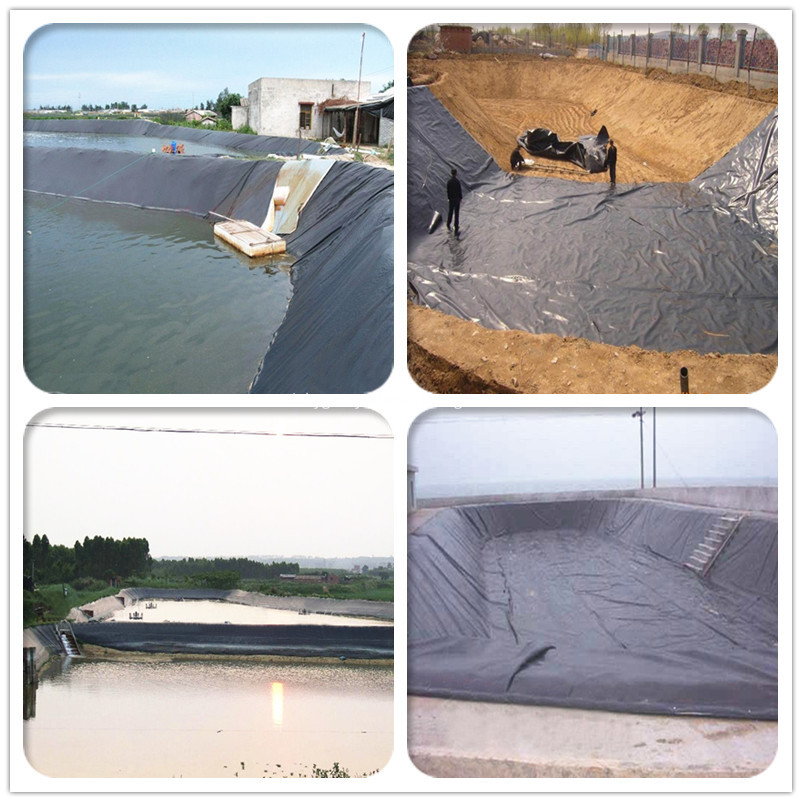 Geosynthetics HDPE Geomembrane