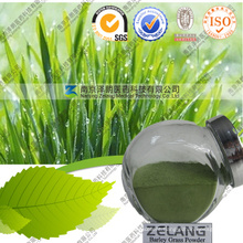 Wholesale Factory Supply Organic Barley Grass Powder