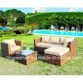 Sofá quente do jardim da venda para 2016 Mobília ao ar livre do vime / Rattan