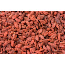 Authentieke ningxia goji-bes