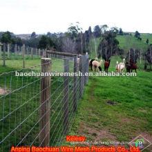 Edelstahlwebartdraht Ranch Zaun zum Anheben von Tieren