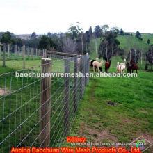Alambre de acero inoxidable alambre Rancho para la cría de animales