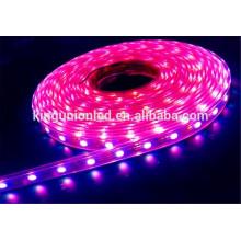 Luz de tira del LED de la garantía comercial, CE ROHS 30leds 60pcs 120pcs SMD3528 tira llevada