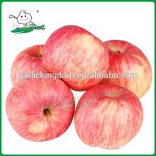 Manzana fresca / manzana fresca de Fuji rojo / manzana fresca de China