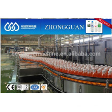 Bottle Conveyor System for food and beverage
