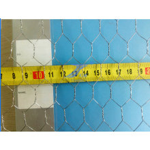 Fabrication de fil hexagonal hexagonal de fabrication de la Chine 20mm * 25mm pour le poulet