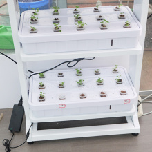 Simple Led Grow Light Hydroponic Systems Grow System