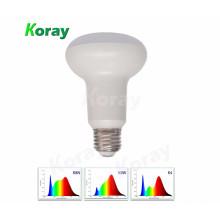 Koray High CRI 9 W espectro completo levou crescer lâmpada