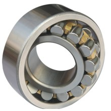 Double Row Self Aligning Roller Bearing