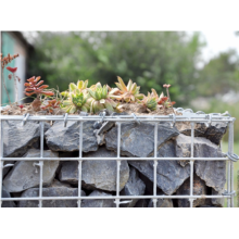 Stainless Steel PVC Dilapisi Gabion Baskets