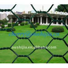 HOT SALE!!!PVC Coated Hexagonal Wire Netting(factory&exporter)
