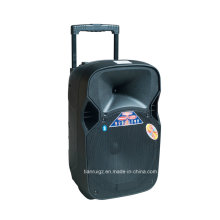 12-Zoll-Professional Dual aktiven Lautsprecher 55W F87