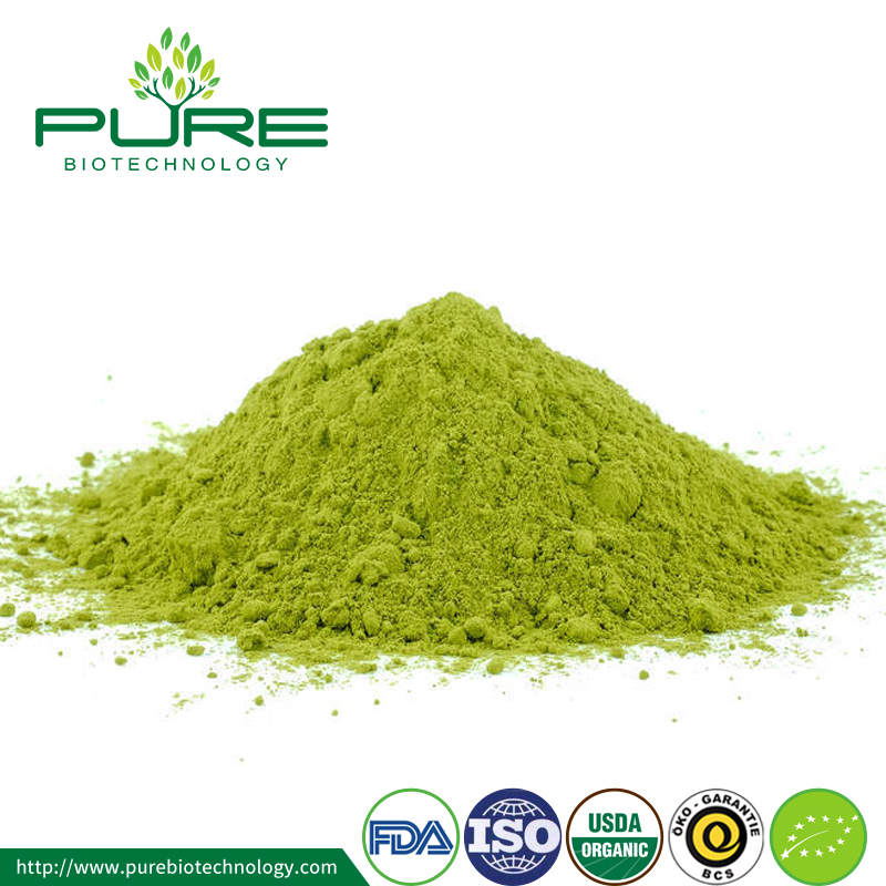 Matcha Green Tea Extract Powder