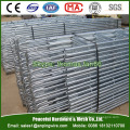 Galvanized Monkey Ladder for Scaffolding