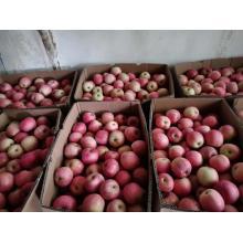 свежий бумажный пакет Western Fuji Apple