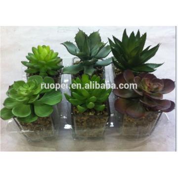 artificial plant / mini succulent plants topiary plants in pots