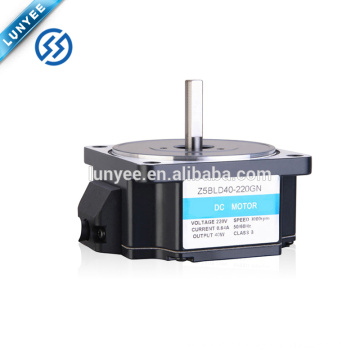 200w 24v 36v 48v low voltage brushless dc gear motor