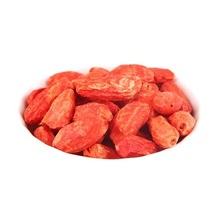 Freeze-dried Goji Berries  Lycium Barbarum Medlar
