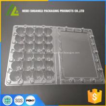 Caixa de embalagem de ovos de codorna de plástico