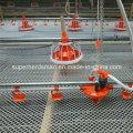 Full Set automatique aviculture équipements