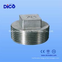 Stainless Steel Plug Fittings Hexagon Plug/Square Plug