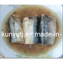 Sardines en conserve en saumure à haute qualité