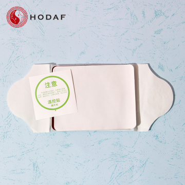 Disposable portable magnetic patch for pain relief